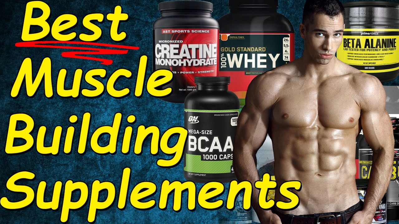 Any best muscle building protein shake